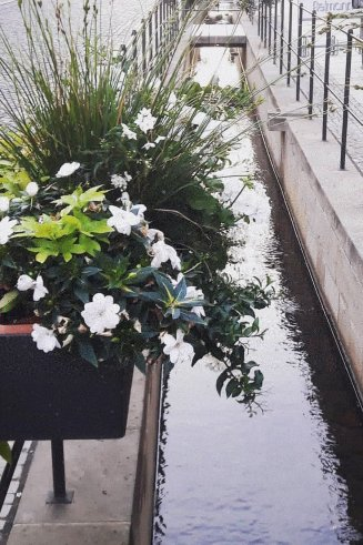 Fußgängerzone Blumen
